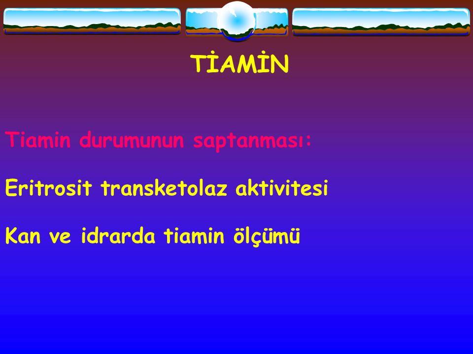 TİAMİN Tiamin durumunun saptanması: Eritrosit transketolaz aktivitesi