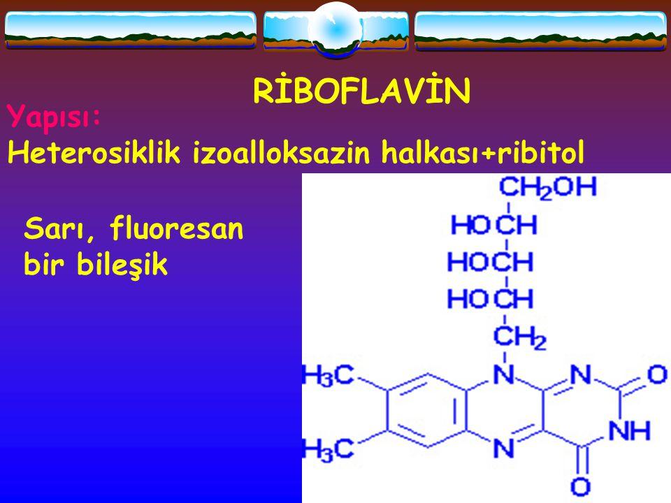 RİBOFLAVİN Yapısı: Heterosiklik izoalloksazin halkası+ribitol