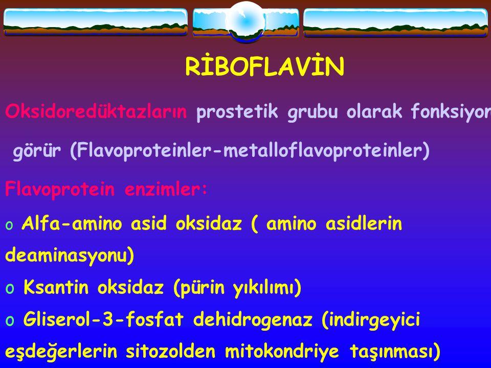 RİBOFLAVİN Oksidoredüktazların prostetik grubu olarak fonksiyon