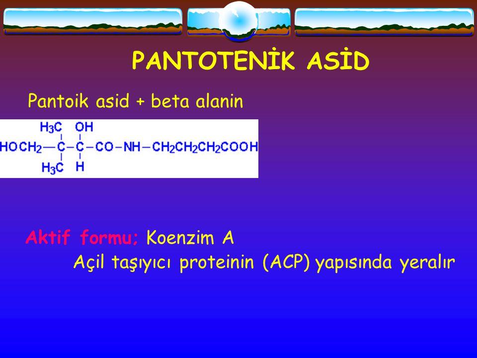 PANTOTENİK ASİD Pantoik asid + beta alanin Aktif formu; Koenzim A