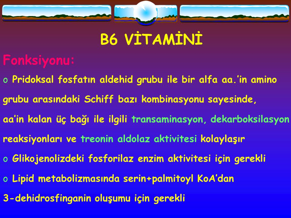 B6 VİTAMİNİ Fonksiyonu: