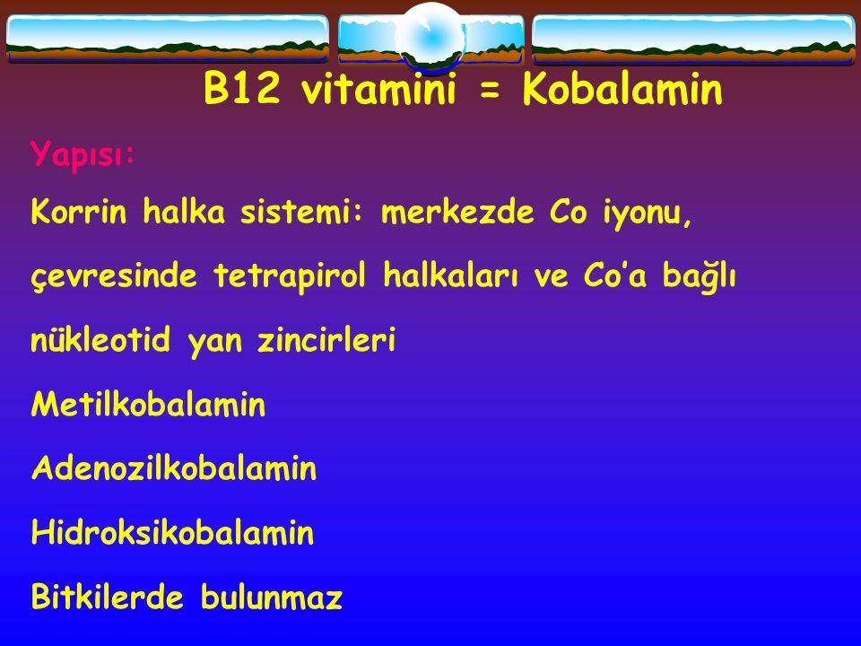 B12 vitamini = Kobalamin Yapısı:
