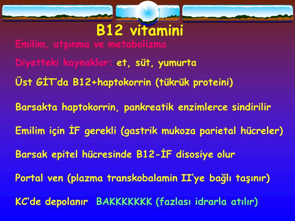 B12 vitamini Emilim, atşınma ve metabolizma