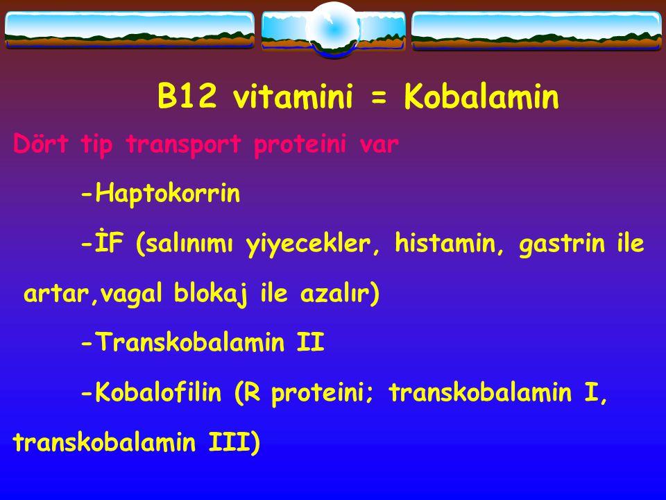 B12 vitamini = Kobalamin Dört tip transport proteini var -Haptokorrin