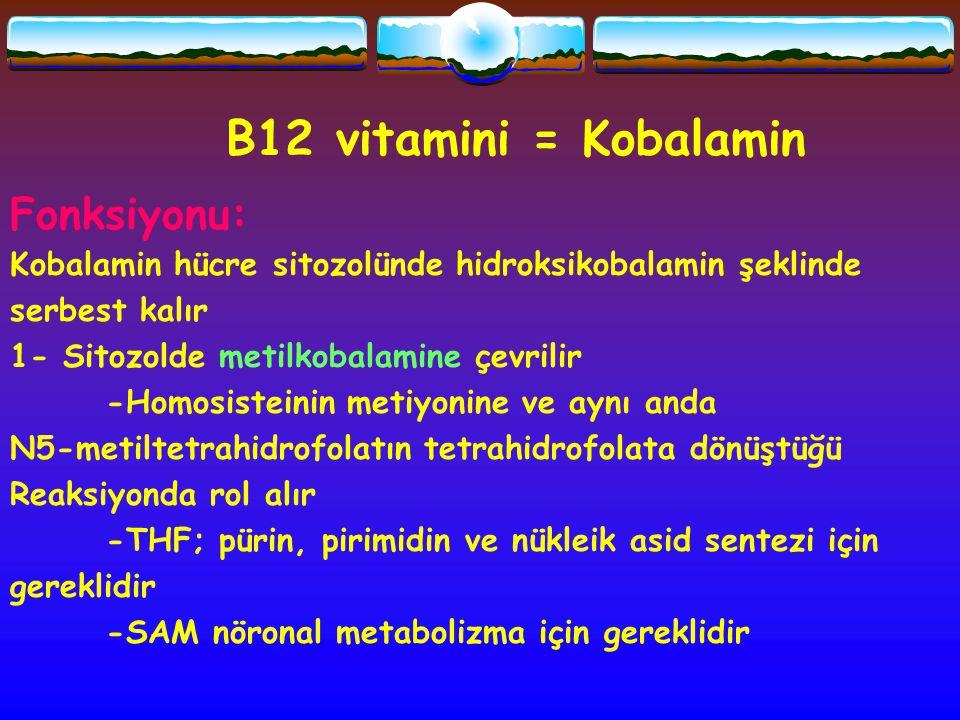 B12 vitamini = Kobalamin Fonksiyonu: