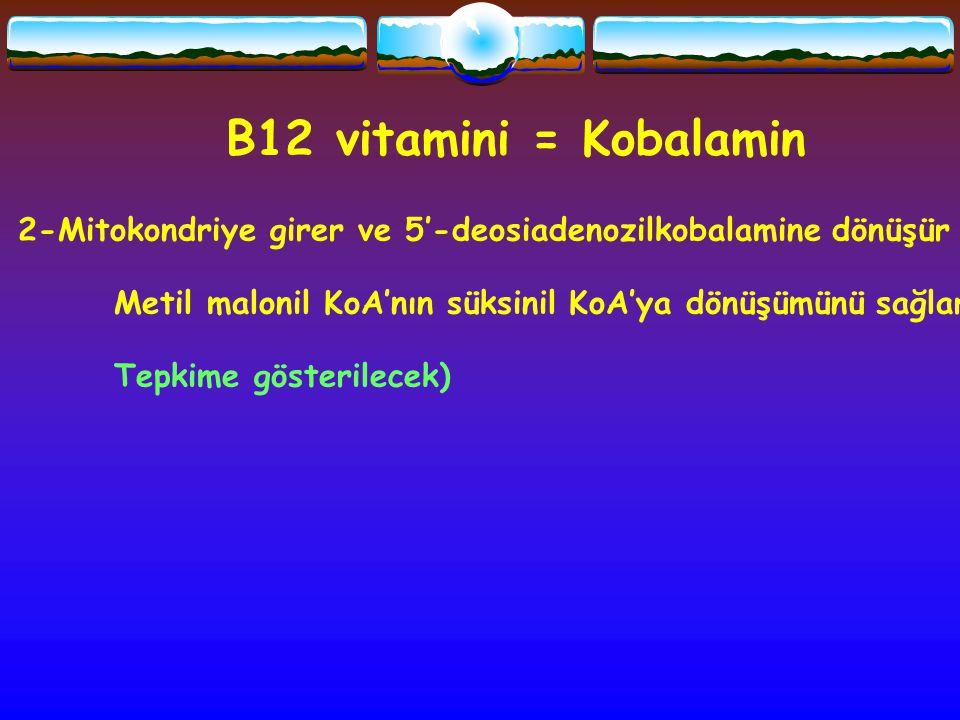 B12 vitamini = Kobalamin 2-Mitokondriye girer ve 5'-deosiadenozilkobalamine dönüşür. Metil malonil KoA'nın süksinil KoA'ya dönüşümünü sağlar.