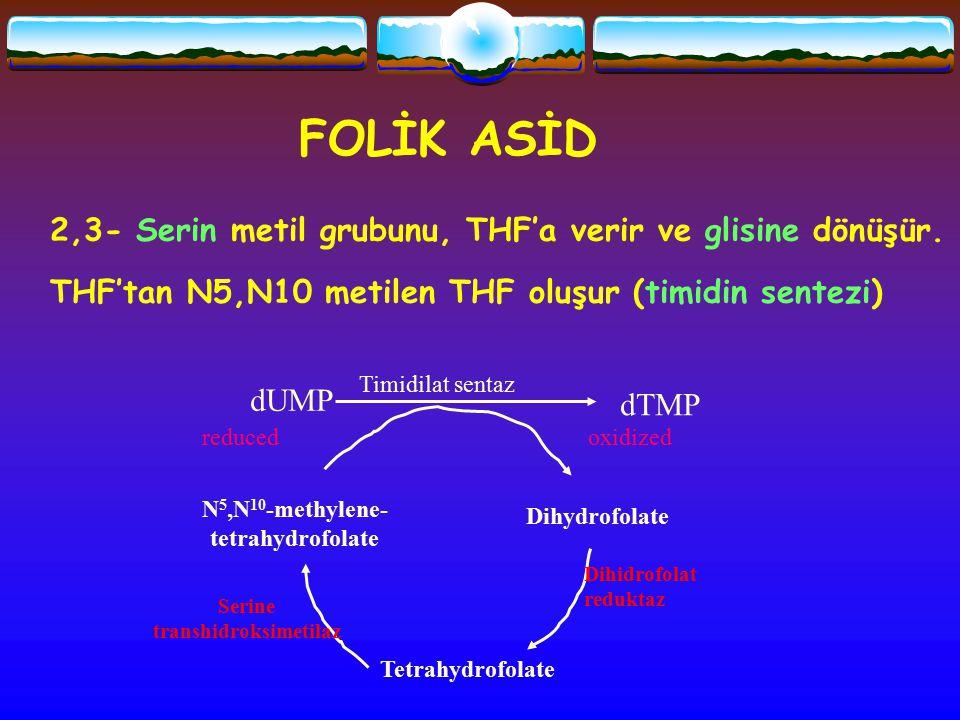 transhidroksimetilaz