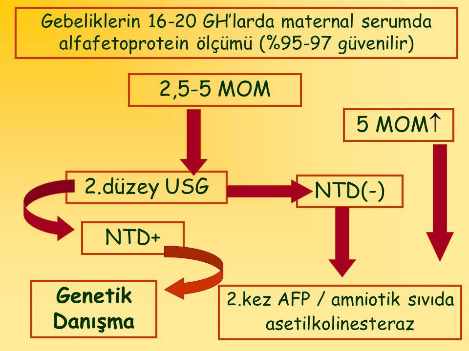 2.kez AFP / amniotik sıvıda asetilkolinesteraz