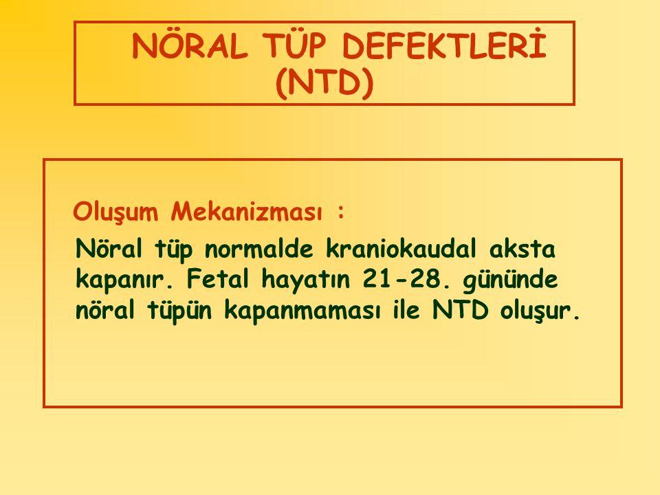 NÖRAL TÜP DEFEKTLERİ (NTD)