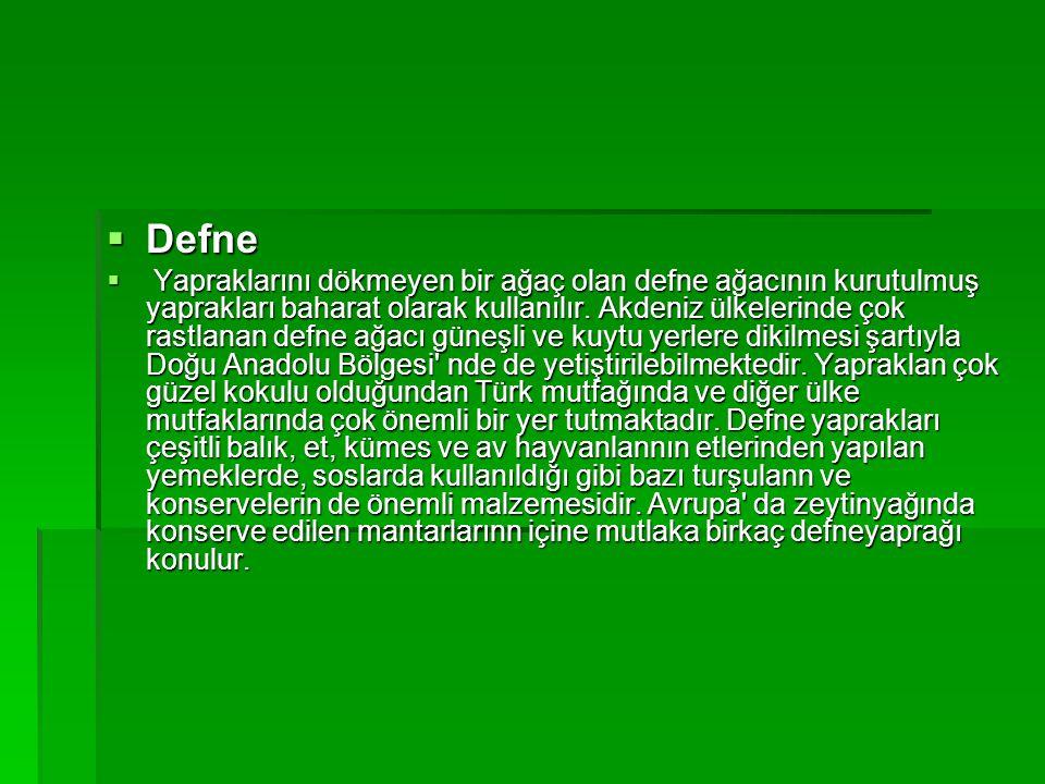 Defne