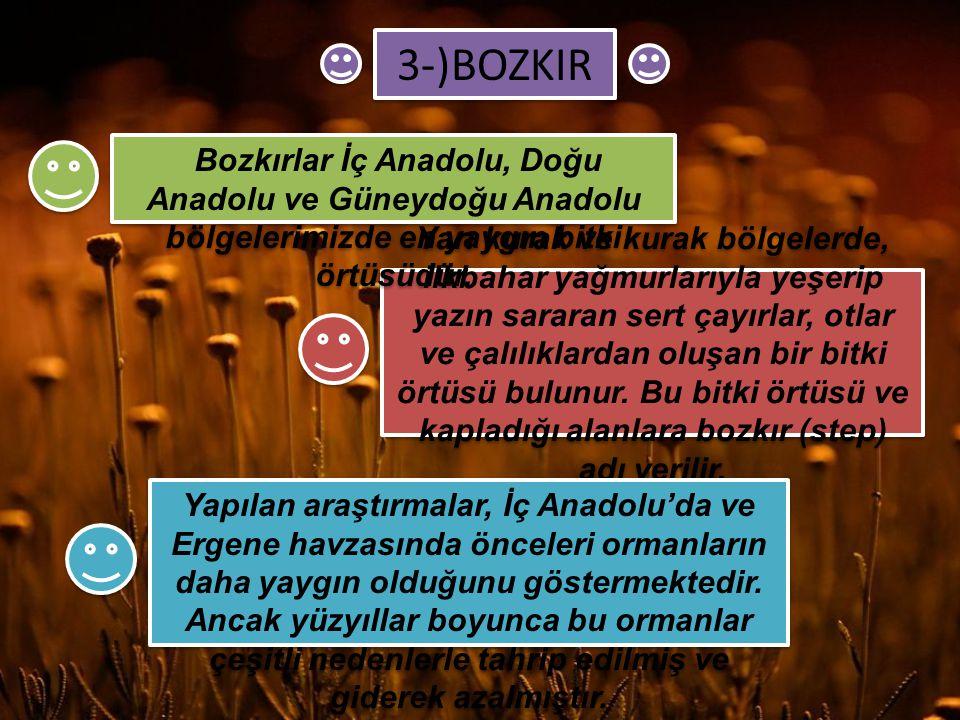 3-)BOZKIR Bozkırlar İç Anadolu, Doğu Anadolu ve Güneydoğu Anadolu bölgelerimizde en yaygın bitki örtüsüdür.