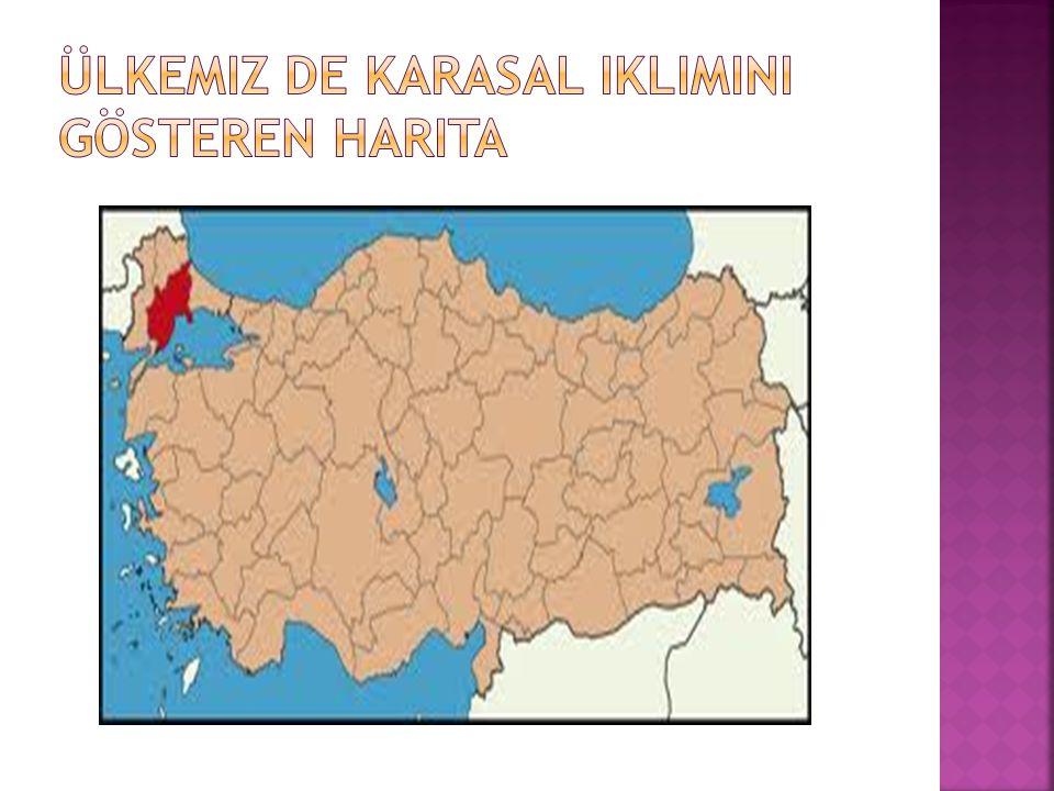 Ülkemiz de karasal iklimini gösteren harita
