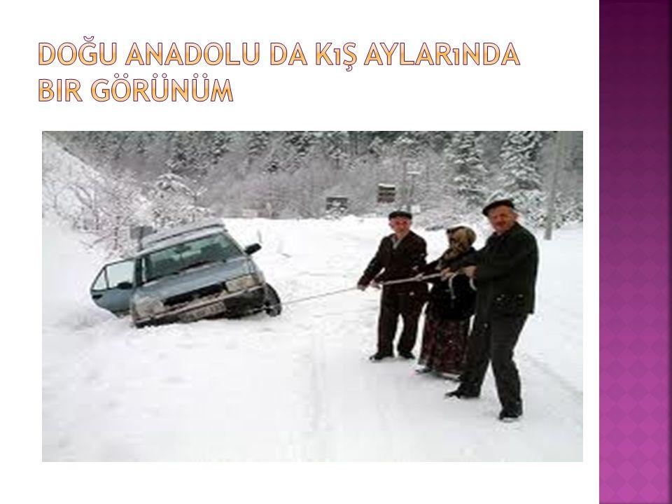Doğu Anadolu da kış aylarında bir görünüm