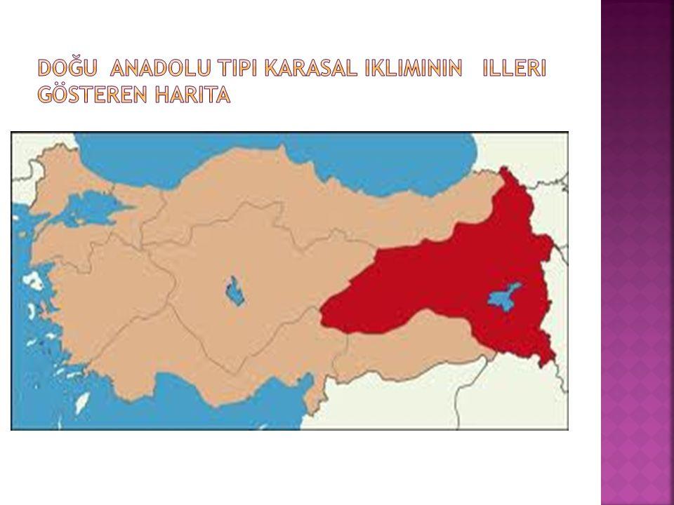 Doğu Anadolu tipi karasal ikliminin illeri gösteren harita