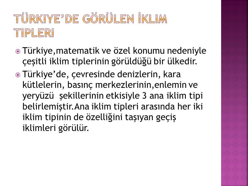 Türkiye'de Görülen İklim Tipleri