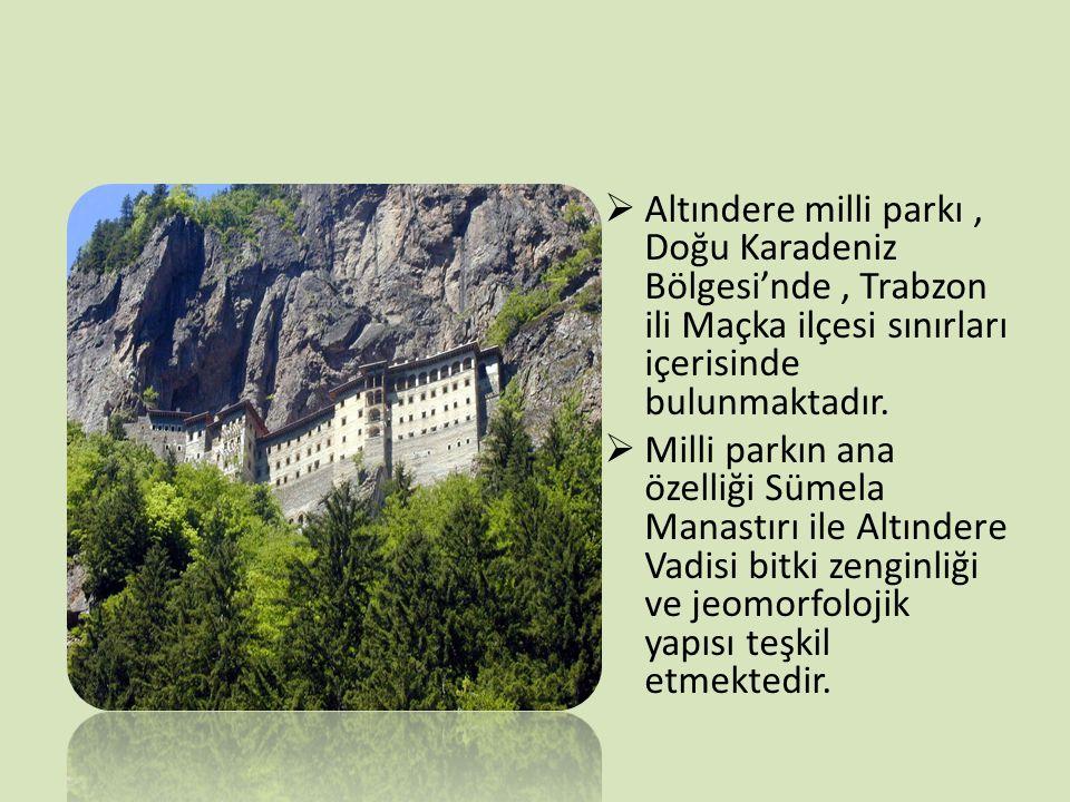 Altındere milli parkı , Doğu Karadeniz Bölgesi'nde , Trabzon ili Maçka ilçesi sınırları içerisinde bulunmaktadır.