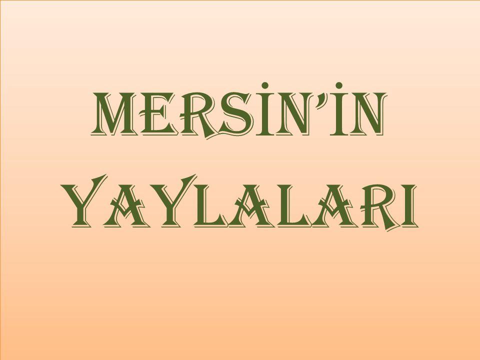 mersİN'İN YAYLALARI