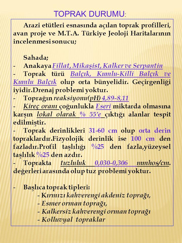 TOPRAK DURUMU: Arazi etütleri esnasında açılan toprak profilleri, avan proje ve M.T.A. Türkiye Jeoloji Haritalarının incelenmesi sonucu;