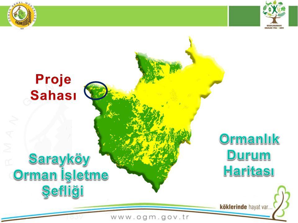 Proje Sahası Ormanlık Durum Haritası Sarayköy Orman İşletme Şefliği