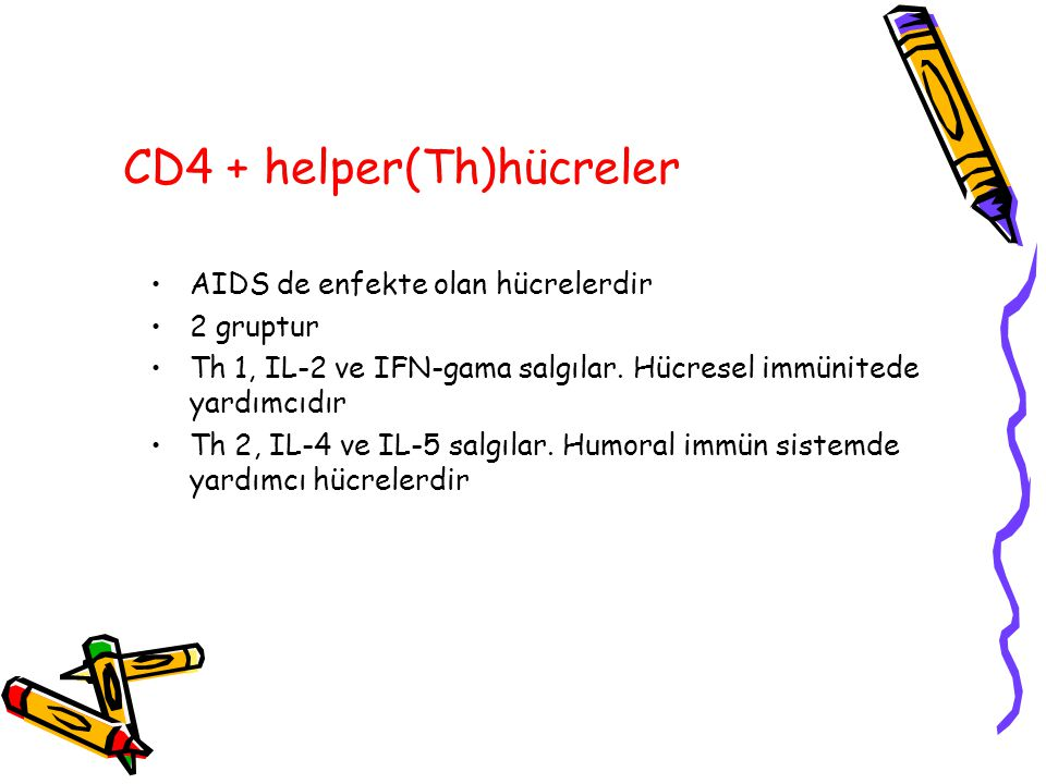 CD4 + helper(Th)hücreler