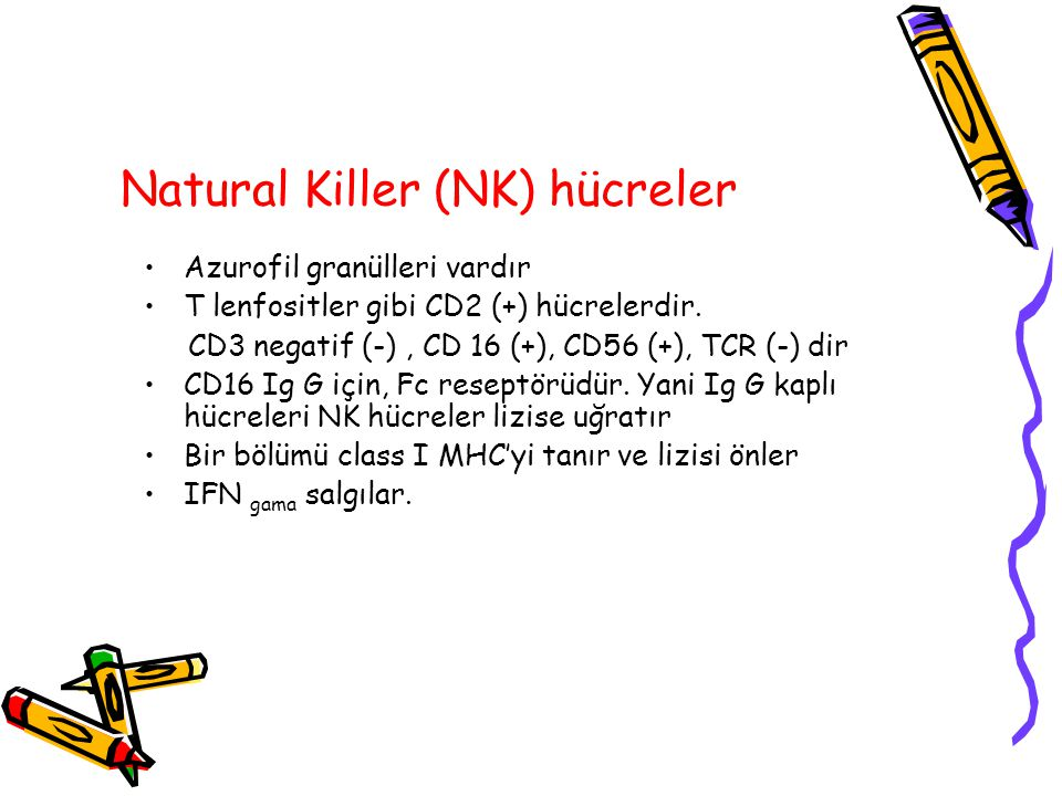 Natural Killer (NK) hücreler