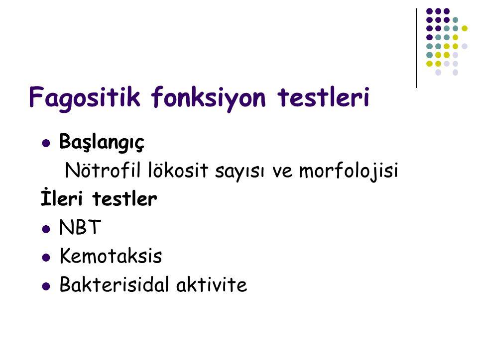 Fagositik fonksiyon testleri