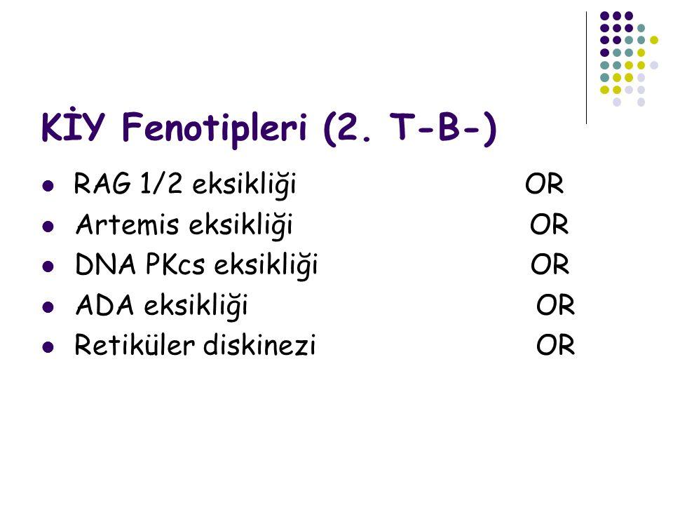 KİY Fenotipleri (2. T-B-)
