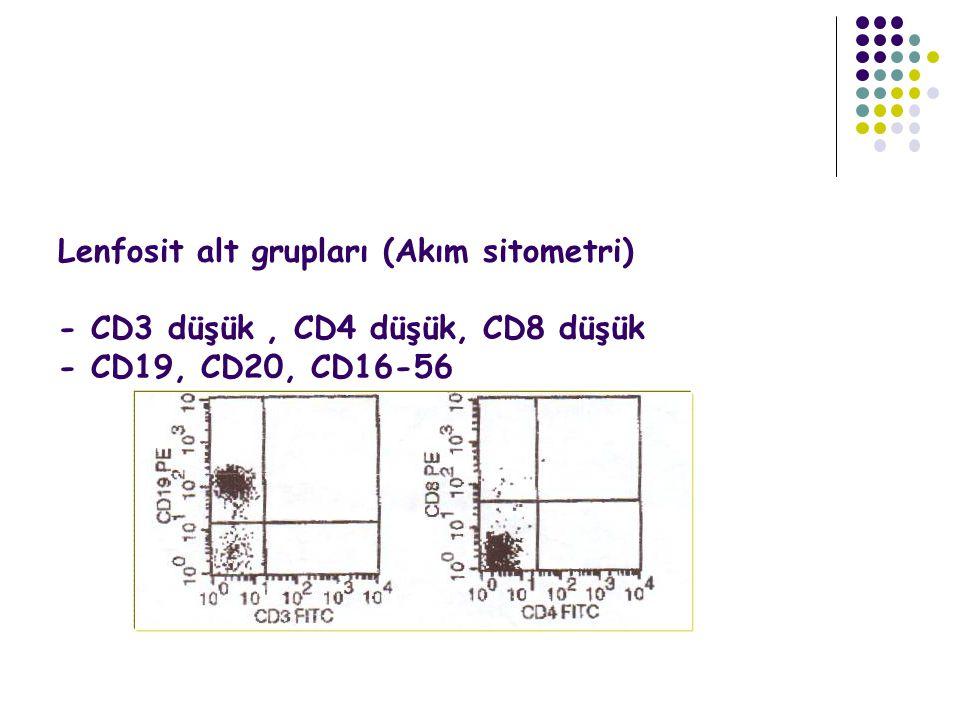 Lenfosit alt grupları (Akım sitometri) - CD3 düşük , CD4 düşük, CD8 düşük - CD19, CD20, CD16-56