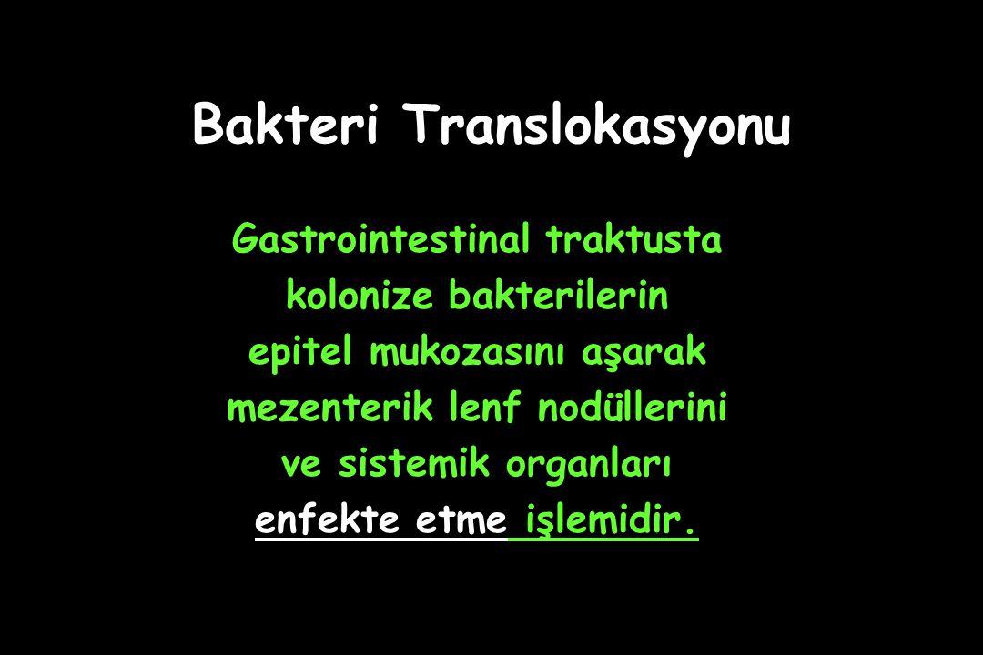 Bakteri Translokasyonu