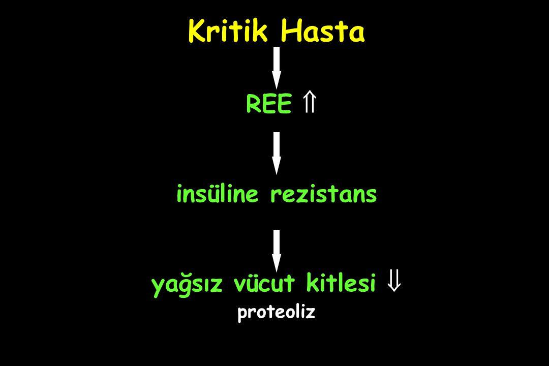 Kritik Hasta REE  insüline rezistans yağsız vücut kitlesi  proteoliz