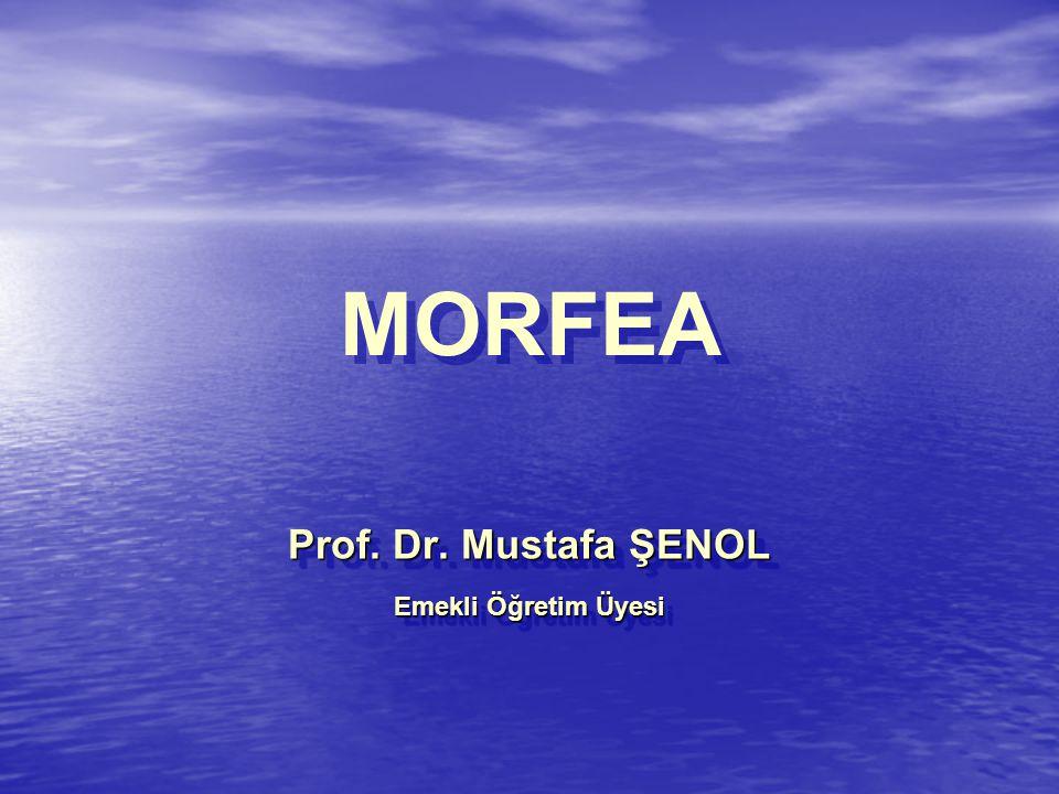 Prof. Dr. Mustafa ŞENOL Emekli Öğretim Üyesi