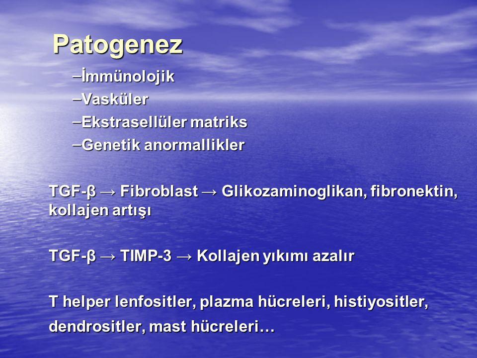 Patogenez İmmünolojik Vasküler Ekstrasellüler matriks