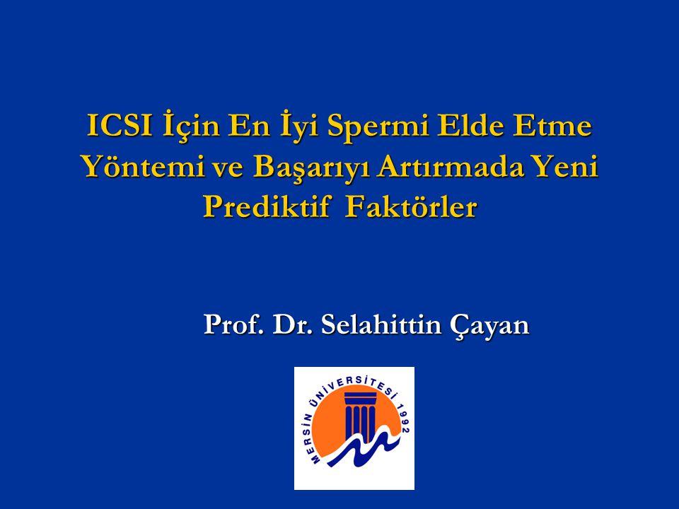 Prof. Dr. Selahittin Çayan