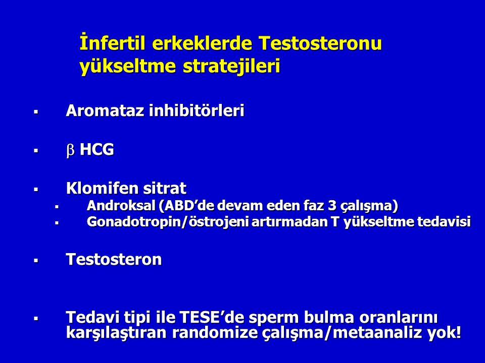 İnfertil erkeklerde Testosteronu yükseltme stratejileri