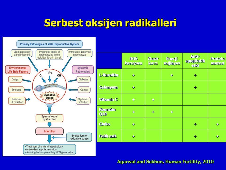 Serbest oksijen radikalleri