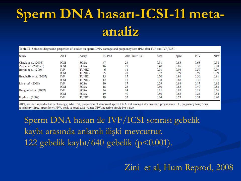 Sperm DNA hasarı-ICSI-11 meta-analiz