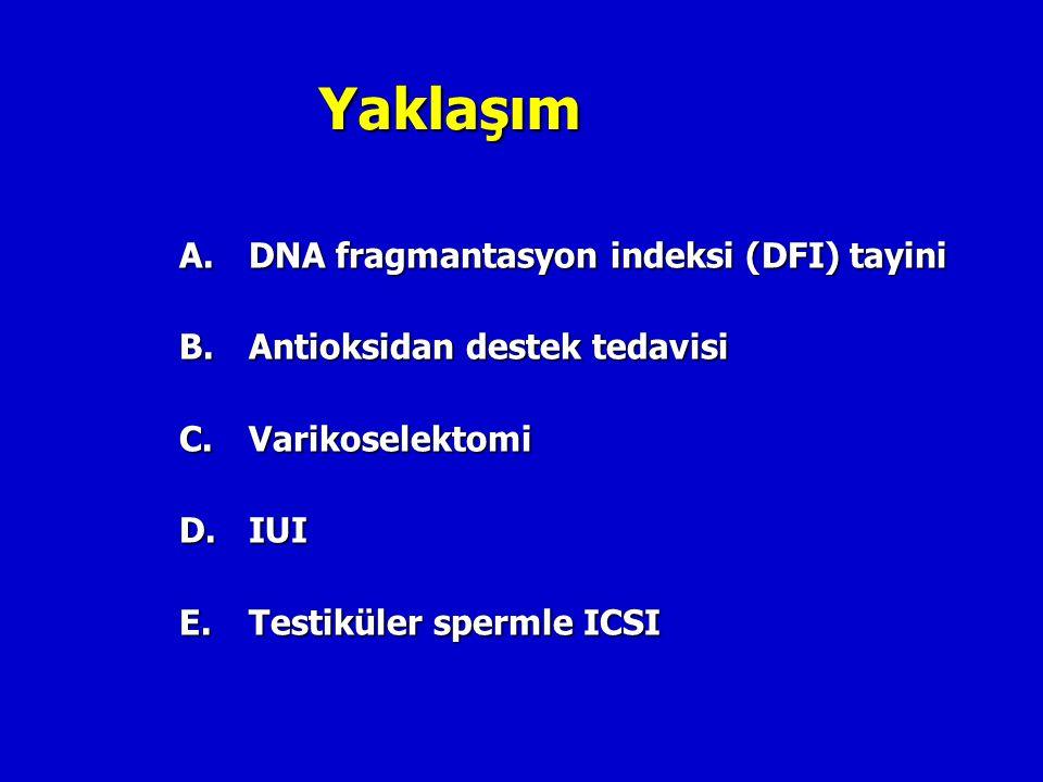 Yaklaşım A. DNA fragmantasyon indeksi (DFI) tayini