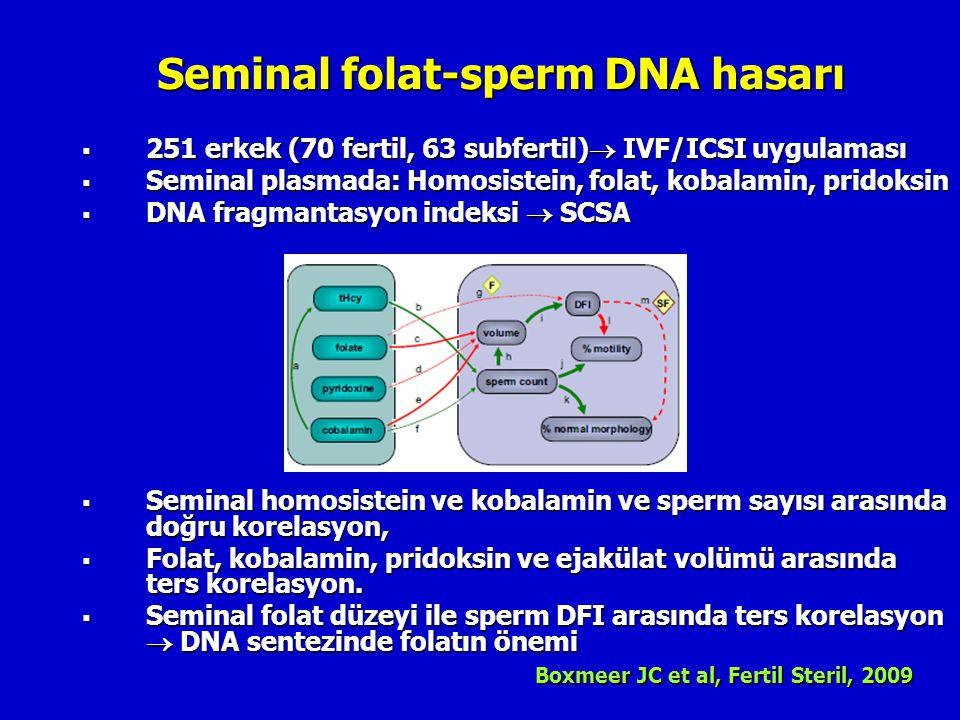 Seminal folat-sperm DNA hasarı