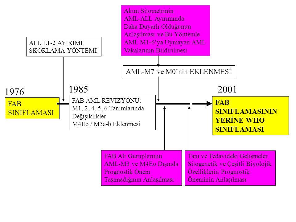 1985 2001 1976 AML-M7 ve M0'nin EKLENMESİ