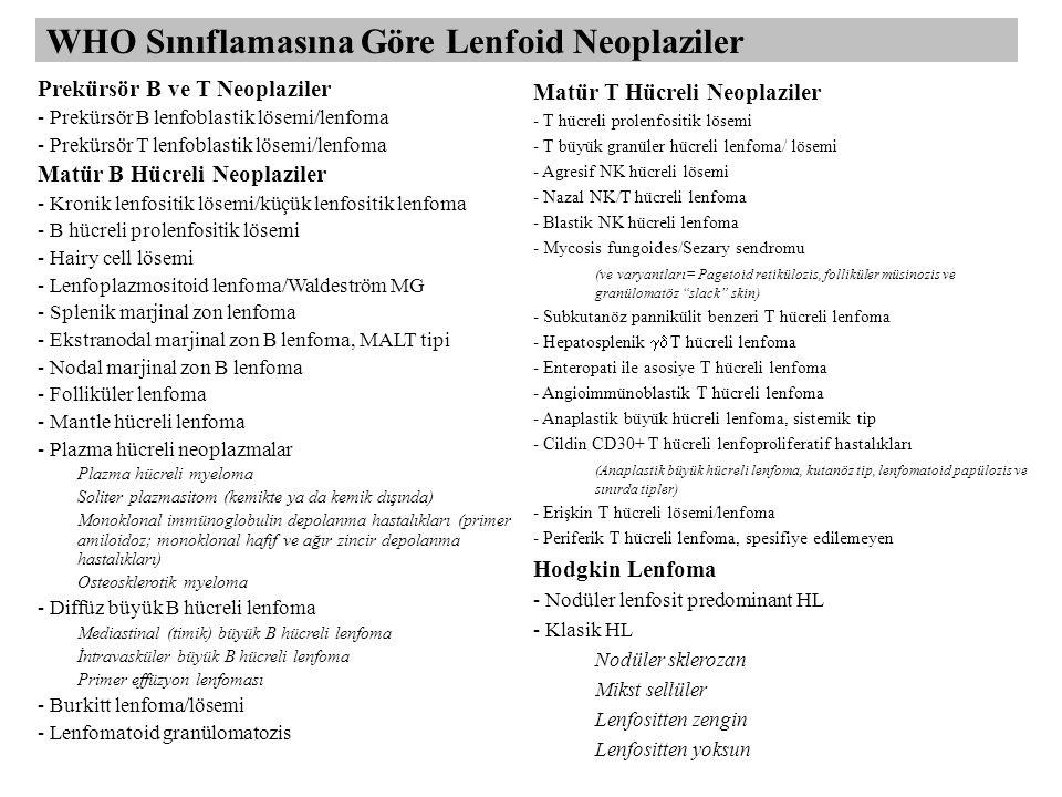 WHO Sınıflamasına Göre Lenfoid Neoplaziler