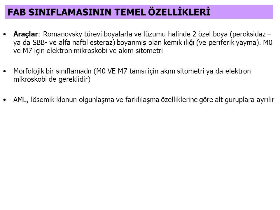 FAB SINIFLAMASININ TEMEL ÖZELLİKLERİ