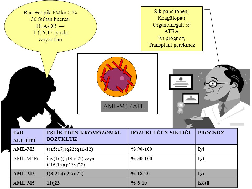 AML-M3 / APL Blast+atipik PMler > % 30 Sultan hücresi
