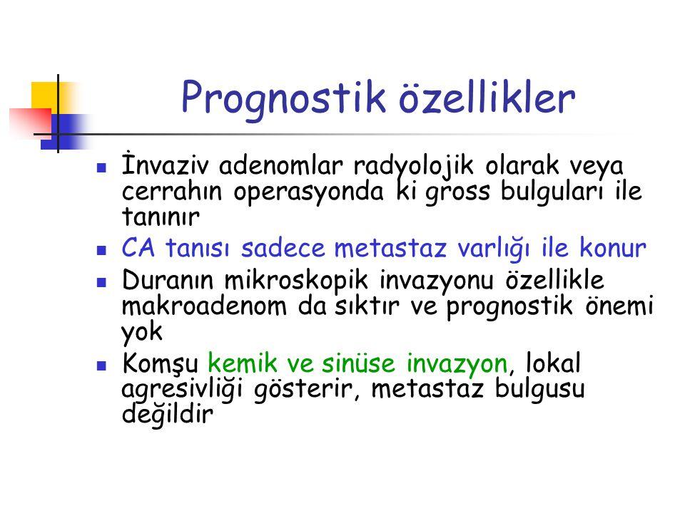 Prognostik özellikler