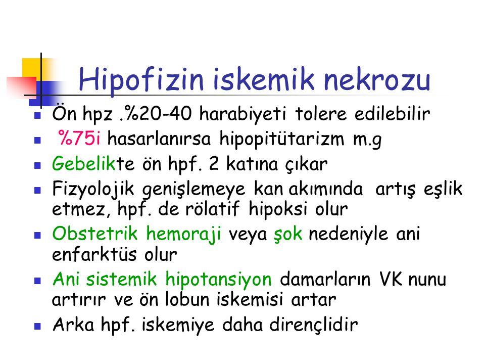 Hipofizin iskemik nekrozu