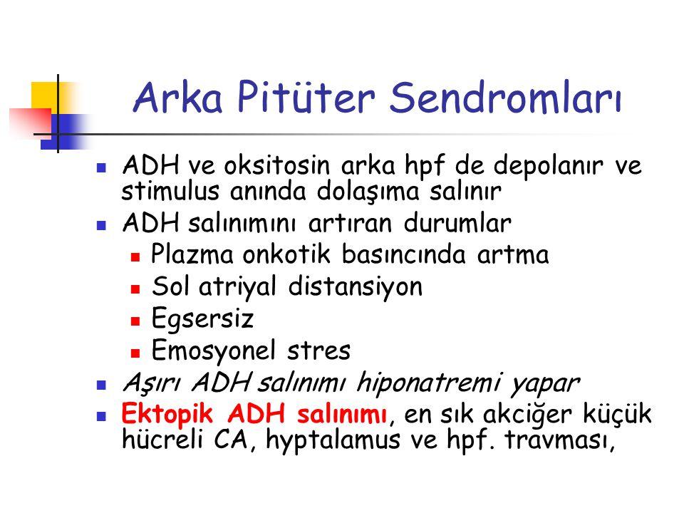 Arka Pitüter Sendromları