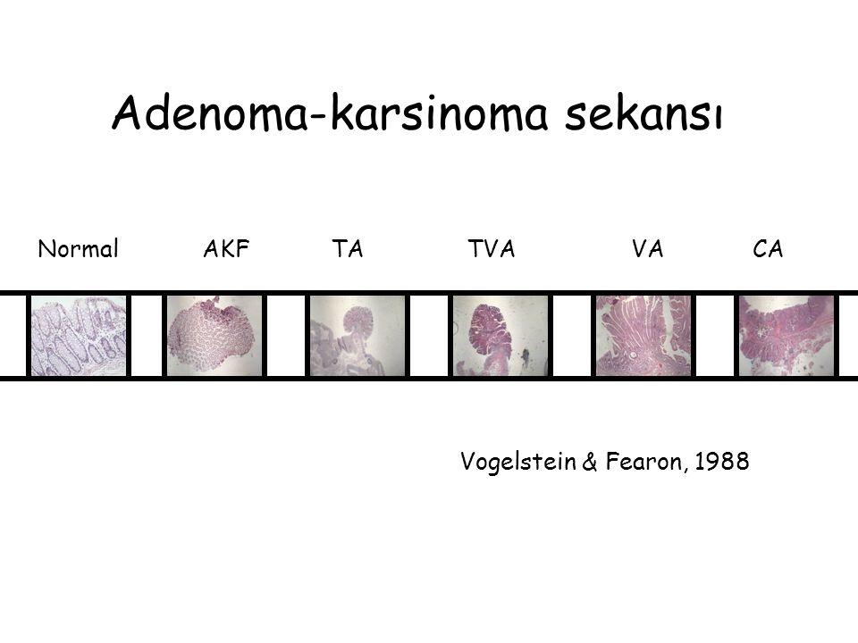 Adenoma-karsinoma sekansı