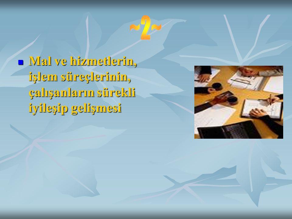 ~2~ Mal ve hizmetlerin, işlem süreçlerinin, çalışanların sürekli iyileşip gelişmesi