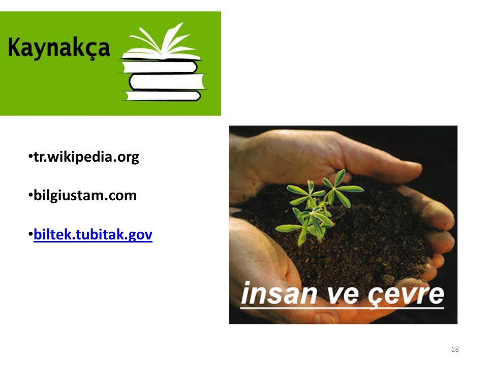 tr.wikipedia.org bilgiustam.com biltek.tubitak.gov