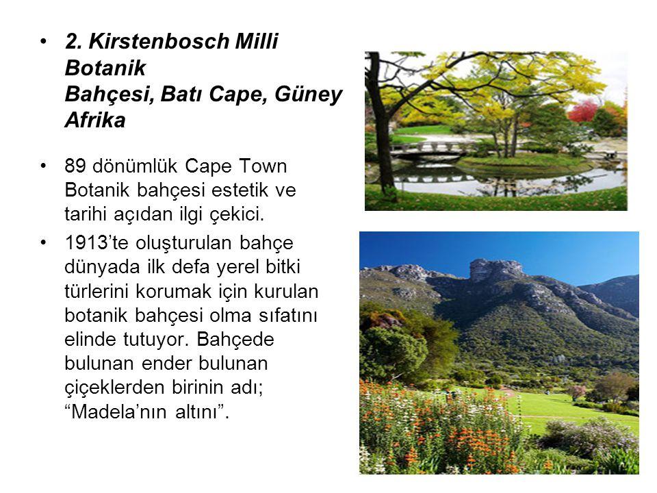 2. Kirstenbosch Milli Botanik Bahçesi, Batı Cape, Güney Afrika