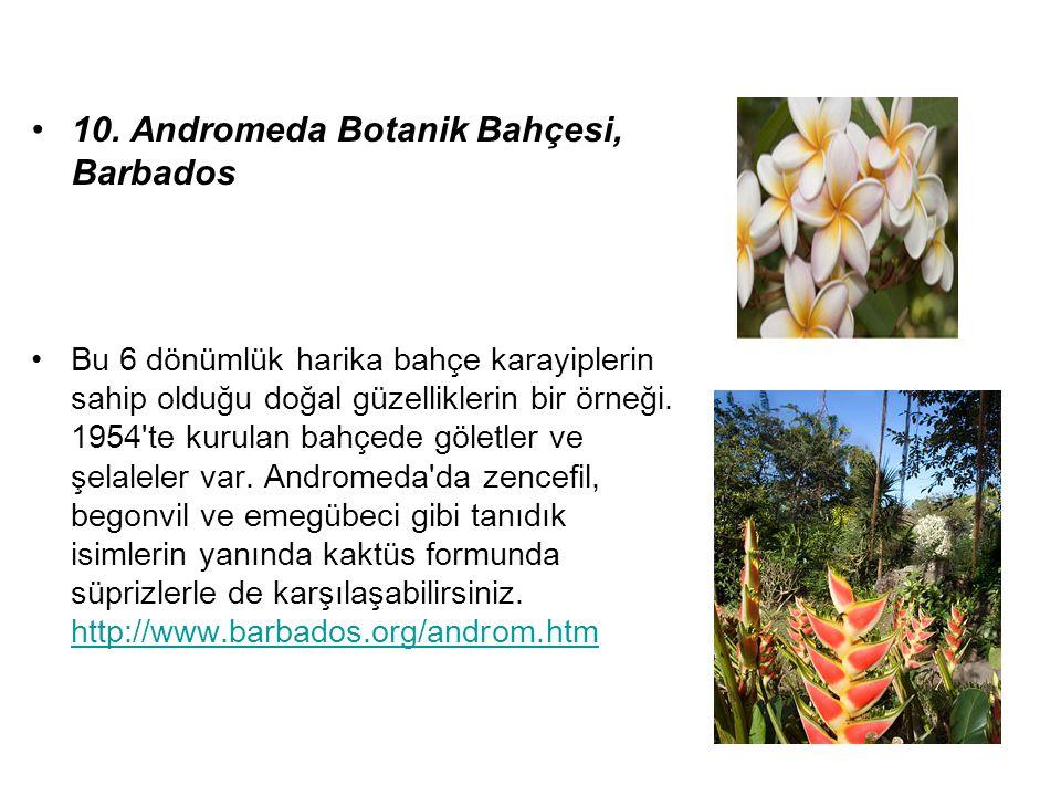10. Andromeda Botanik Bahçesi, Barbados